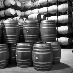 Tyler Barrel Room